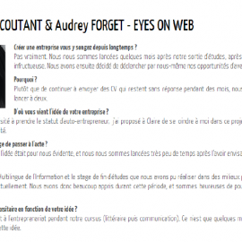 Eyes on Web - Potentiel CA
