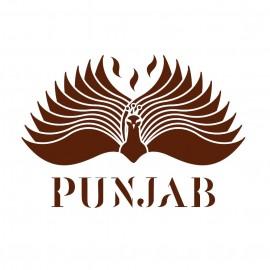 Eyes on Web - Punjab Reims